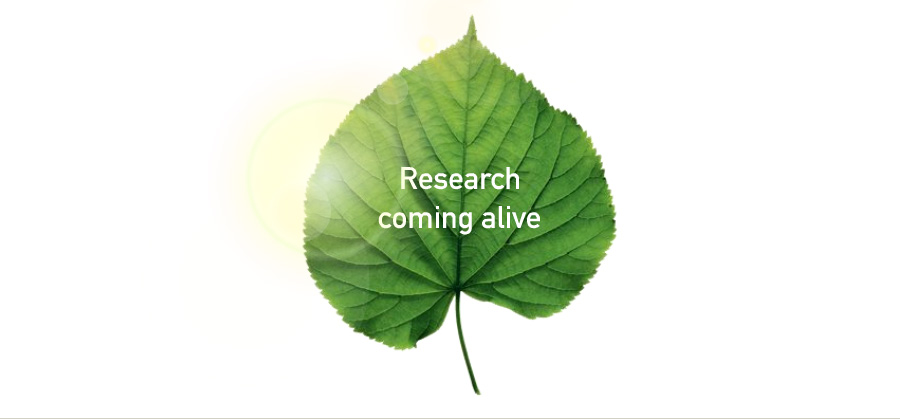 Leaf with sun in background. Text on leaf reads Research comin alive
